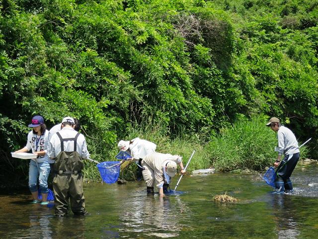 水生生物採集実習(初級2)