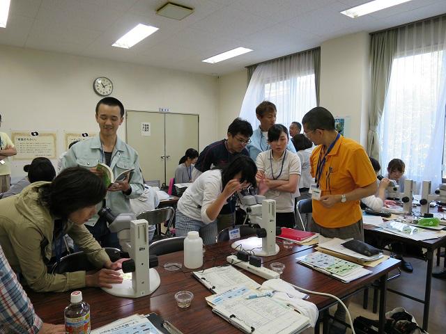 顕微鏡での観察実習(初級2)