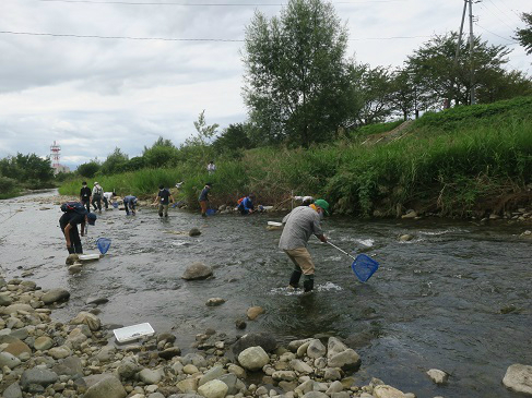 水生生物採集の様子3
