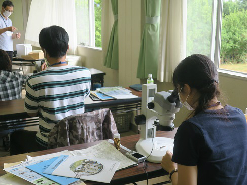 顕微鏡による水生生物の観察